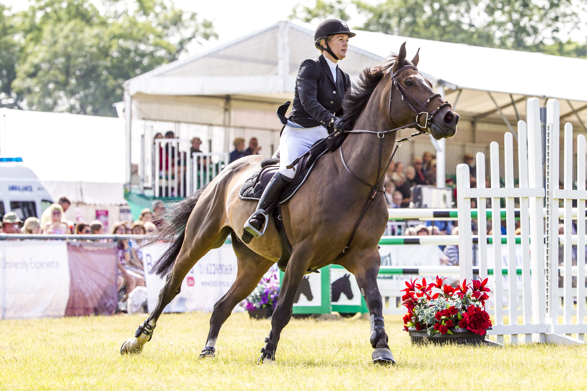 Show Summary | Kent County Show